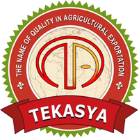 TEKASYA Citrus, Fruits, Vegetables Supplier